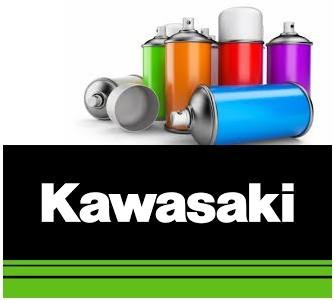 Peinture Pour Moto Kawasaki Solvantée Spray 400ml