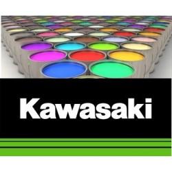 Peinture moto Kawazaki solvantée 250 ml