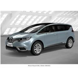 Peinture Renault  à vernir pot de  250ml