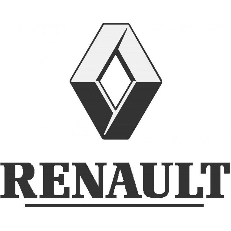 Peinture auto Renault base mat à vernir 250ml