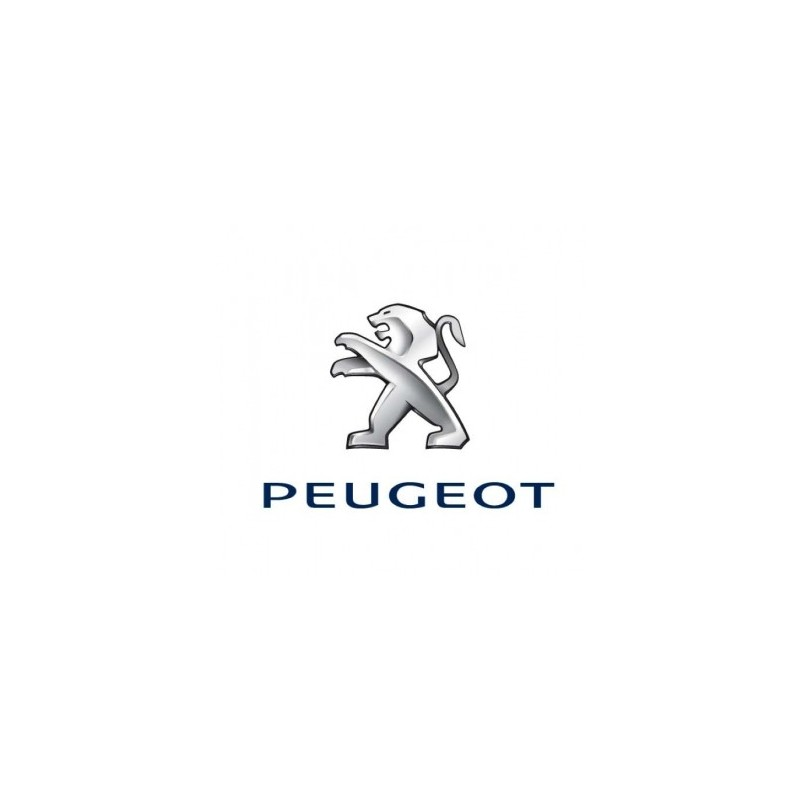 Peinture Peugeot base mat à vernir 250ml