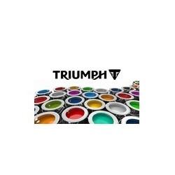 Peinture pour TRIUMPH pot de 250 ml