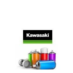 Pack peinture et vernis en bombe pour Kawasaki