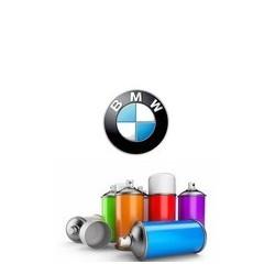 Peinture BMW en bombe