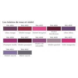 Peinture satinée antirouille pour tous supports en bombe en teintes RAL  rose et violette
